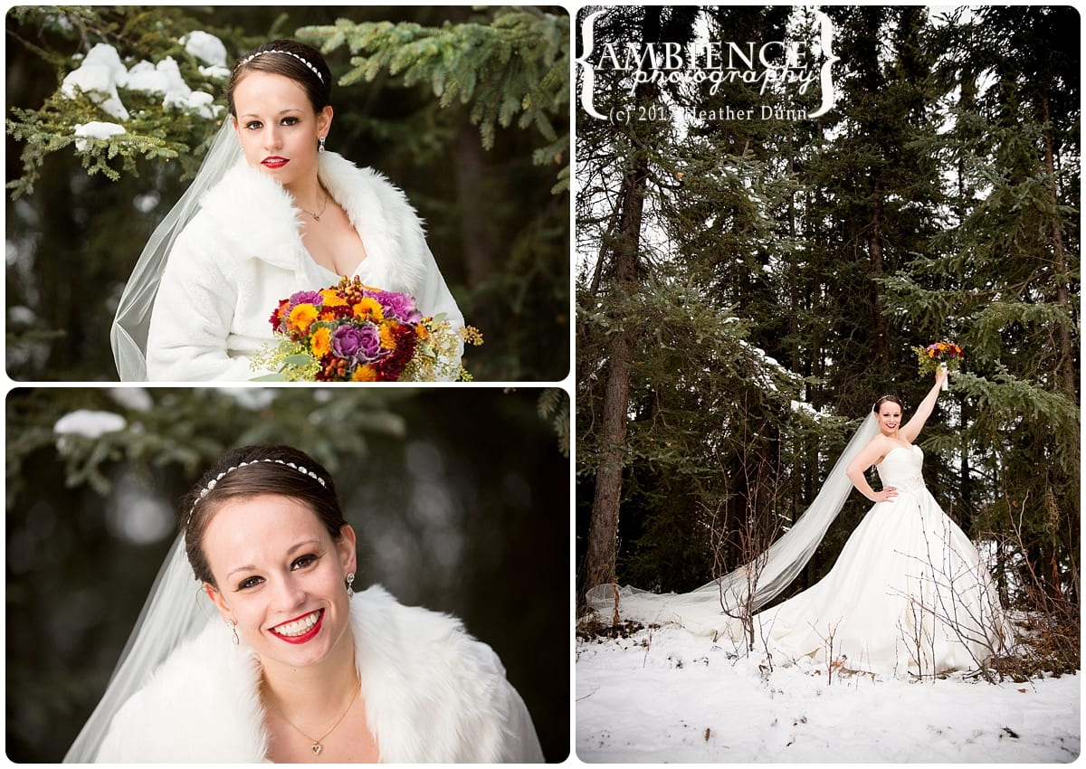 Ambience Photography,Heather Dunn,Photography in Alaska,Wasilla Alaska,
