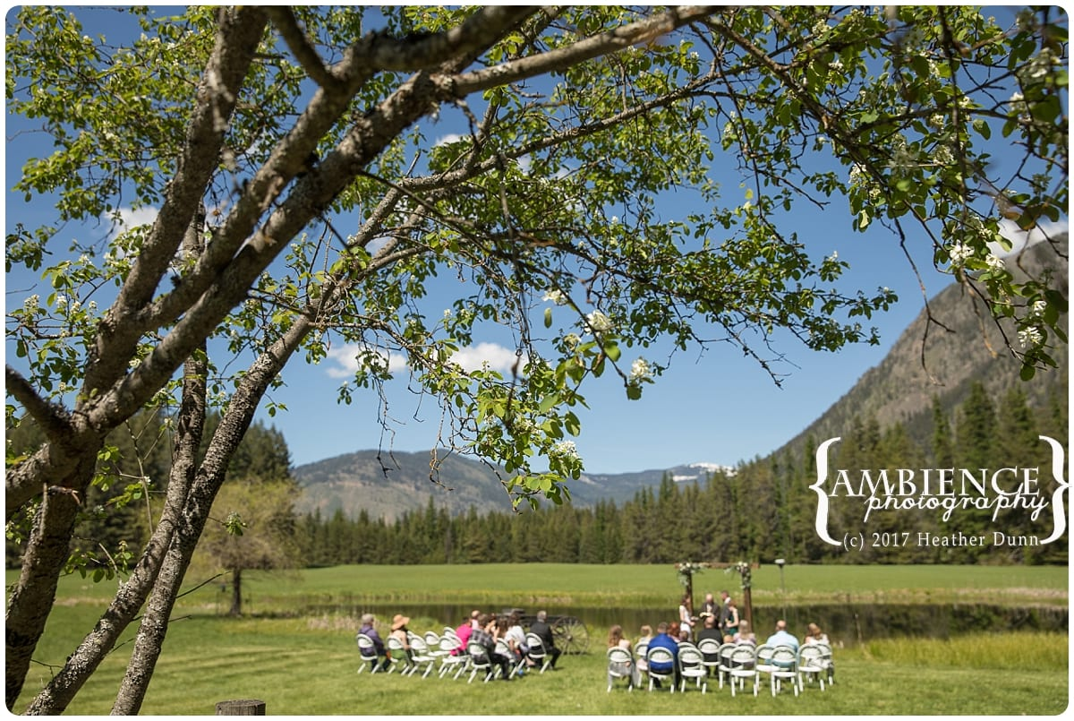 Ambience Photography,Bride,Heather Dunn,Montana,Mountain Wedding,Outdoor Wedding,Portriats,Wedding Photography,Weddings,Weddings Montana,